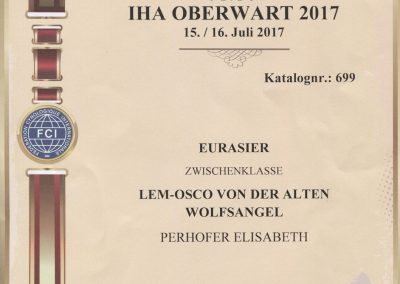 IHA Oberwart 2017