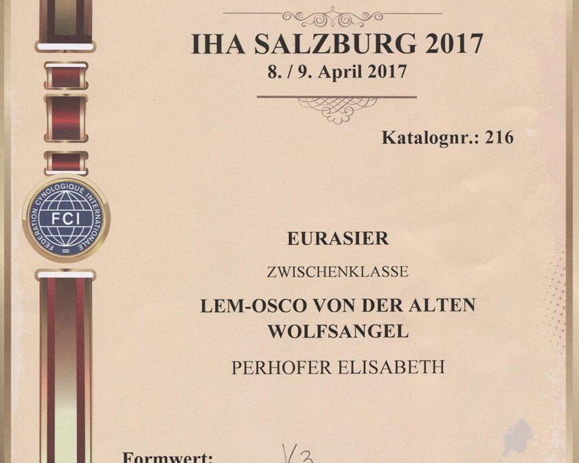 IHA Salzburg 2017